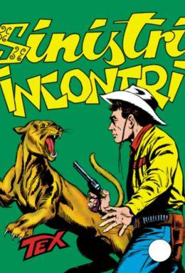 Copertina di Tex n.34 – Sinistri Incontri